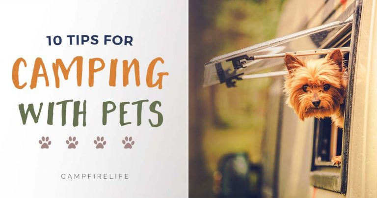10 tips for camping with pets